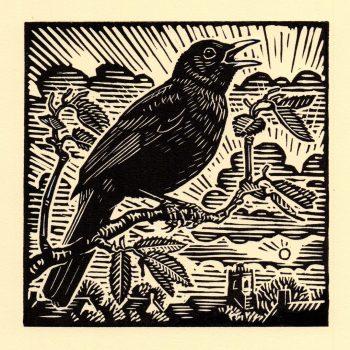 Blackbird by Richard Allen, Linocut