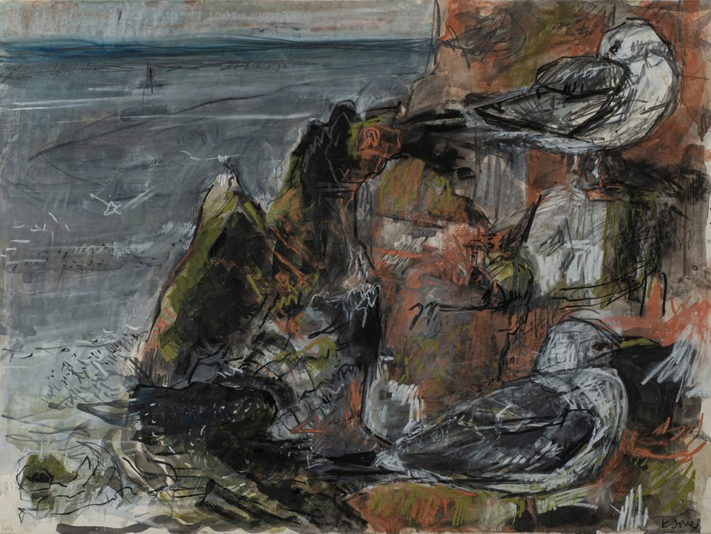Kittiwakes Dunbar by Kittie Jones, Charcoal, pastel and graphite on paper