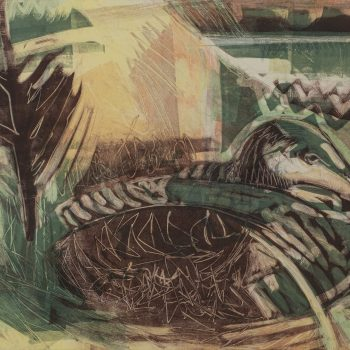 Nesting Eider by Kittie Jones, Monotype
