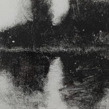 Wetland Water I by David A Parfitt RI, Monoprint