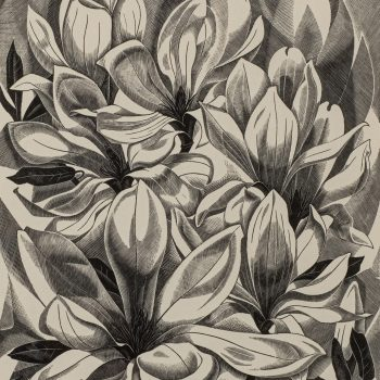 Magnolia by Monica Poole, Wood engraving