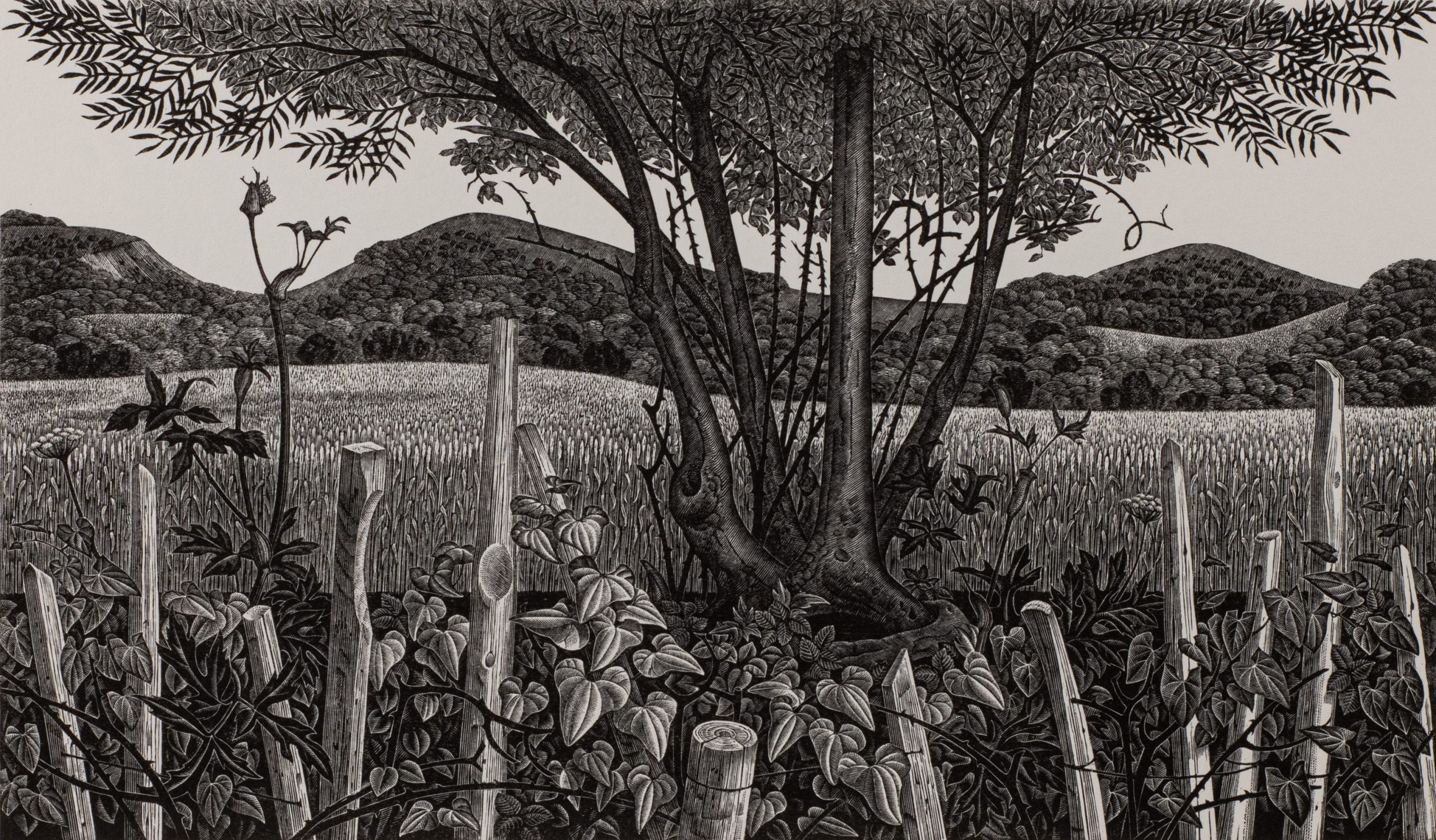 Pilgrims' Way by Monica Poole, Wood engraving