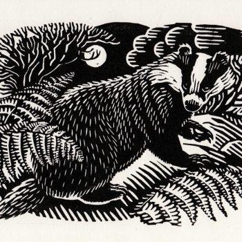 Badger by Richard Allen, Linocut print