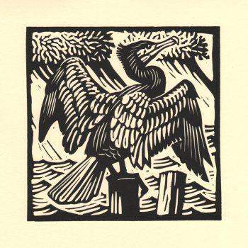 Cormorant by Richard Allen, Linocut print
