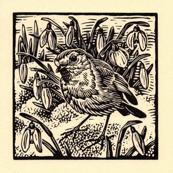 Robin by Richard Allen, Linocut print