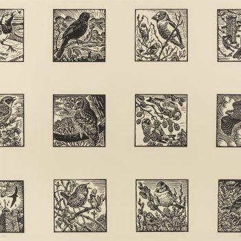 Multiple Garden Bird Print by Richard Allen, Limited edition linocut