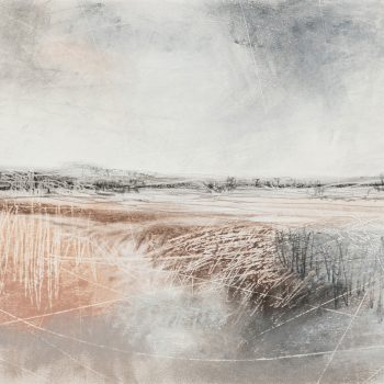 Wild Lands by Janine Baldwin PS, Pastel, charcoal and graphite on paper