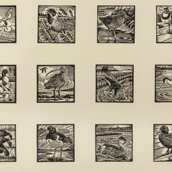 Multiple Coastal Bird Print by Richard Allen, Limited edition linocut