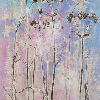 Summer in an English Country Garden III by Stef Mitchell, Nature monotype