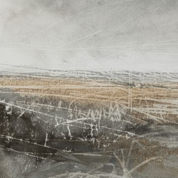 Detail of Wild Lands II by Janine Baldwin PS