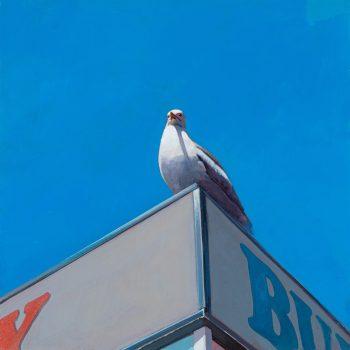 Seagull II by Andrew Morris, Acyrlic on board